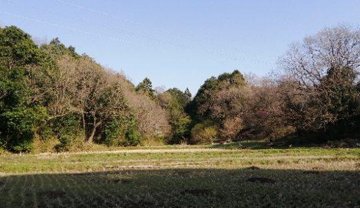 美月家のお米づくり③〜田植に向けての田んぼの準備と里山の様子〜